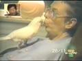 Video Lucu Bahasa Jepang